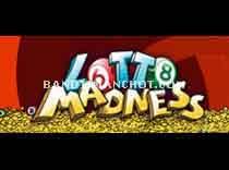 Lotto Madness...